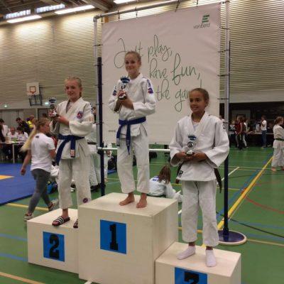 Verslag internationaal Van Buel Judotoernooi te Oss