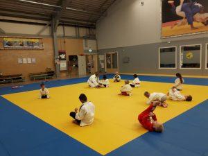 Proefles judo woensdag 10 oktober 1530-1630uur