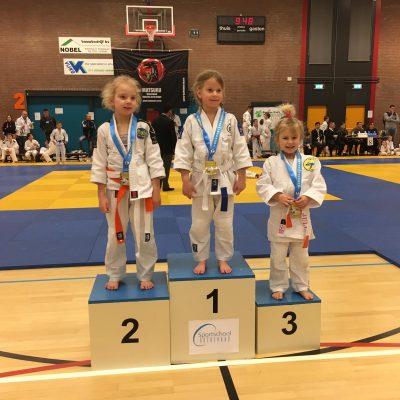 Medaille regen voor JVIJ judoka's in Bodegraven