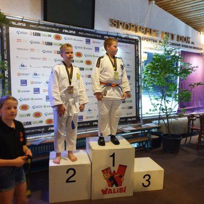 Flevolands Open International